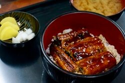 Unagi Don Set (Grilled Eel)
