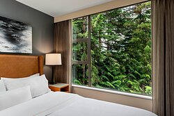 Suite Forest View