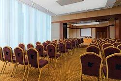 Prusa Meeting Room - Theatre Setup