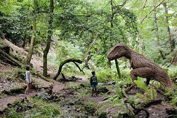 Search for the Willow T - Rex at home among the tree ferns.