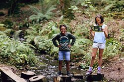 Explore walking trails, fun for the whole family.
