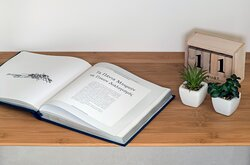 Premium apartment - decoration objects