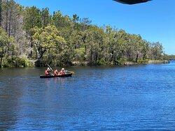 Everglades Cruise & Canoe Tour