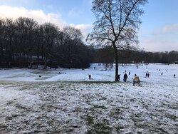 Bowling Park, four seasons