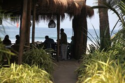 Palm Grove Beach Resort