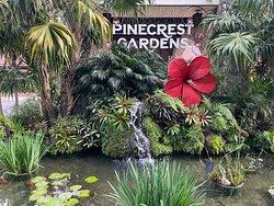 Pinecrest Gardens Farmer's Market