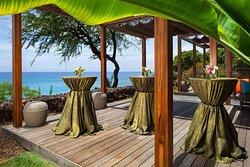 Vista Deck Reception