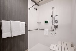 Accessible Guest Room Bathroom - ADA Roll-In Shower