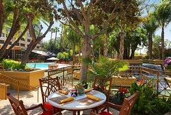 Terrace Grill Patio