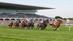 Arlington International Racecourse just minutes away
