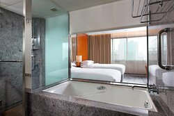 Director Bathroom - tub