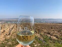 Un verre de Chablis aux pieds des vignes