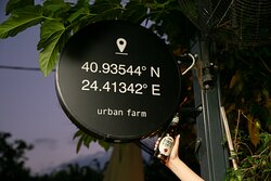 coordinates