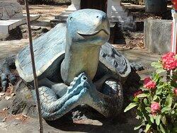 Sawasdee Mr. Turtle & thank you for giving back to me long life