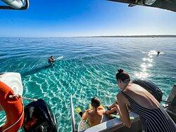 Kid friendly snorkel spot