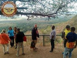 Standing proudly at the View point.  #tanzania #africa #zanzibar #travel  #safari #nature #photography #serengeti #adventure #africansafaris #travelafrica #instatravel #beach #natgeo #explore #kilimanjaro #tanzaniasafaris #love #visitafrica #naturephotography #familytravel #travelphotography #giantsenecio #wanderlust #wildlifephotography
