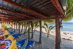 Zona de playa con camastros