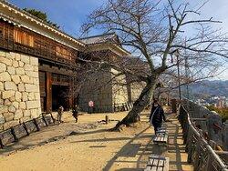愛媛県松山市の観光名所と言えば松山城・・・ 今回初めても愛媛県観光だったので来てみました、天守閣からは360°景色が良かったです。 お城もきちんと管理されていて、綺麗な松山城でした。