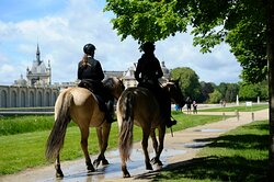 Balades à cheval Partenaire Activité payante