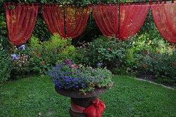 Garten Wohnzimmer