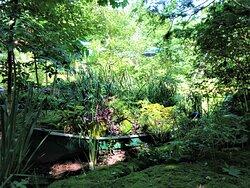 Coup de cœur pour le jardin du sous-bois situé près de l'étang romantique