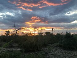 The African sunset