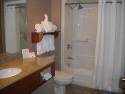 Standard Guest Bathroom in Holiday Inn Express Hotel Deadwood SD