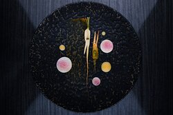 The Modern Approach to Bulgarian/Italian Fusion @ Dieci Boutique Restaurant.
