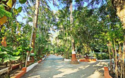 Feel Relaxed, Refreshed and Rejuvenated amidst the serenity of nature!