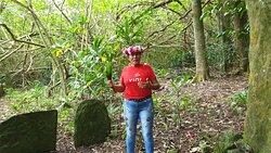 Excursion Tour de l'ïle avec Eléonore qui nous raconte avec passion les contes et légendes de son île, ici un Marae