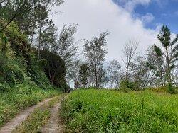 Excursion Tour de l'ïle, on fera la traversière à pied