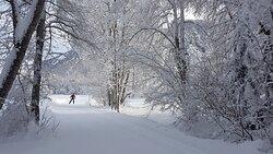 Ab auf die Langlaufski! Zwischen Filisur und Alvaneu Bad geht es über 14 km durch verschneite Wälder und wildromantische Landschaften – die besten Blicke auf die Welterbelinie der Rhätischen Bahn erhascht man von der Schleife Solis. // Off to the cross-country skis! Between Filisur and Alvaneu Bad the trail goes over 14 km through snow-covered forests and picturesque landscapes - the best views on the World Heritage Line of the Rhaetian Railway can be caught from the Solis loop. #LandwasserWelt