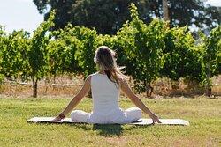 Yoga entre viñedos / Yoga among vinegards