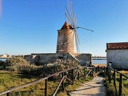 SALINE ❤️💛SICILIA Sicilia ricordi di un bellissimo viaggio!!!