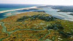 Great Marsh Kayak Tours