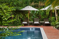 Pool amidst Tropical Garden