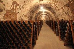 Private cellar tour