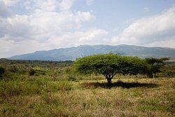 Scenic Beauty of the Ngong Hills just a stone throw away from Nairobi....