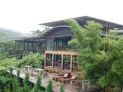 Authentic Rainforest experience