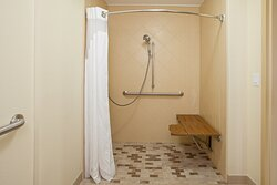 One Bed Room - Mobility Accessible with Roll-in Shower