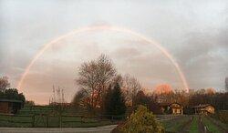 arcobaleno sulla pioppa