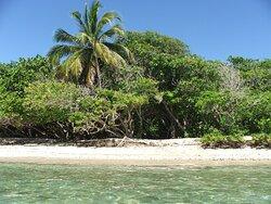 Paradis accessible en Kayak!