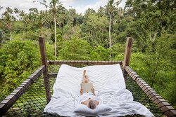 Rooms with Hammock Floating Net overlooking the Ubud Jungle