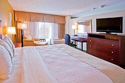 King Suite Guest Room