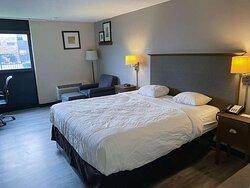 Motel Rochester single