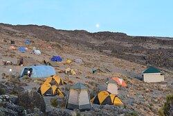 Cycle up Kilimanjaro
