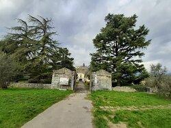 ingresso al parco lato Villaggio Belvedere con gli alberi secolari e sullo sfondo la villa