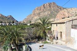 Valle de Ricote - Ojós   Ricote, Murcia, Spain