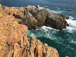 Cape D'Aguilar Marine Reserve (7)