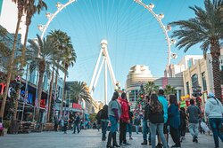 Las Vegas Urban Adventures